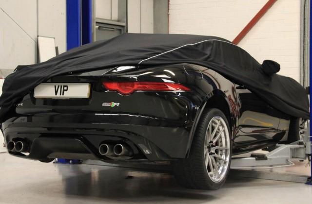 VIP Design jaguar Predator